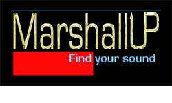 Marshall and VOX Amps, accessories and parts for sale . . .     ORIGINAL MARSHALL Carry your effects pedals, cables, picks,or whatever you need for the gig. This bag will get the job done.   or      We ship WORLDWIDE  Local Pickup is unavailable All